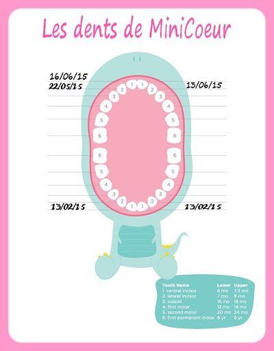schéma ordre dents lait bébé