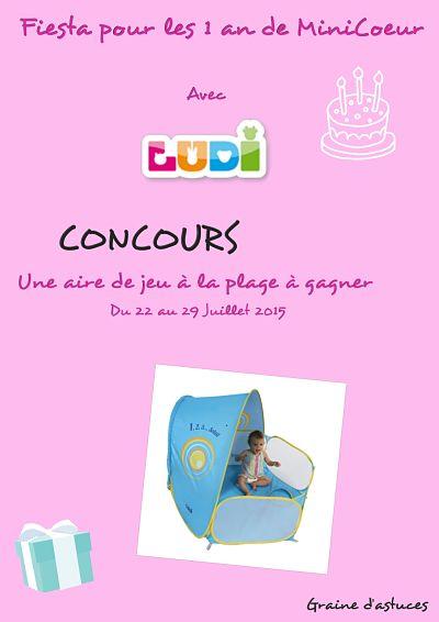 concours_ludi_aire_de_jeu