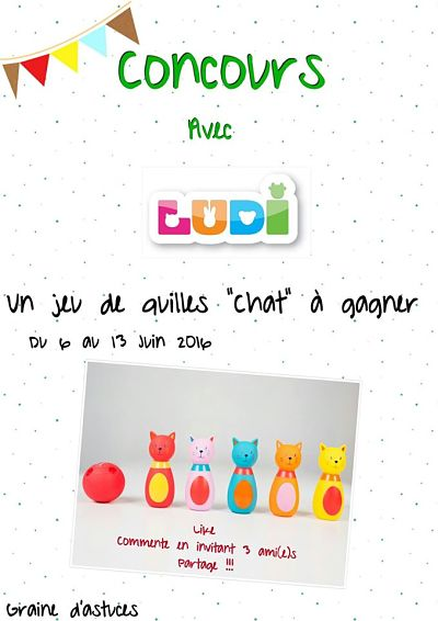 quilles chat ludi test avis concours