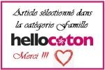 sélection famille blog hellocoton